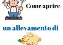 http://www.agraria.org/conigli/coniglidacarne/alimentazione.htm