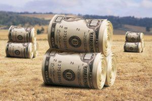 contributi fondo perduto agricoltura