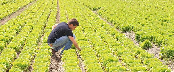 Giovani-imprenditori-agricoli