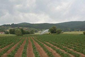 requisiti azienda agricola