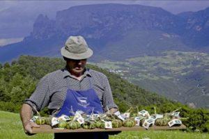 imprenditore-agricolo-di-successo