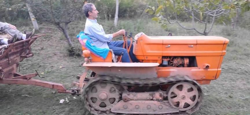 quanto guadagna un imprenditore agricolo